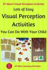 visual perception activities