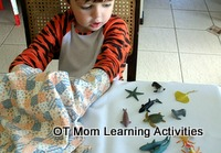 tactile perception activity with toy animals