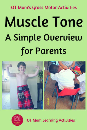What is muscle tone?