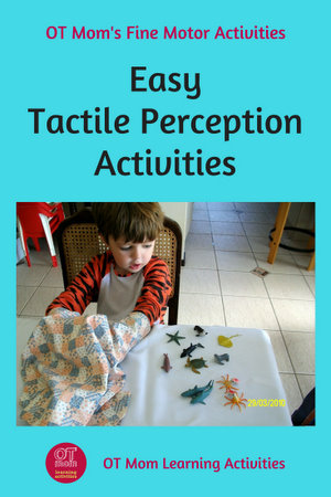 easy tactile haptic perception activities