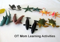 Tactile Perception Sea Creature Toys